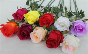 Одиночная роза бутоном.
