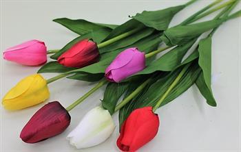 Одиночный тюльпан закрытый.