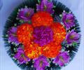 Полянка ритуальная ААА0045
