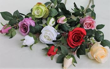 Ветка розы с бутоном.