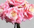 Букет роз Б0186
